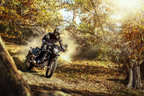 2021 Kawasaki KLX300 First Look Preview Photo Gallery